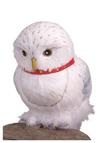 Hedwig Accessory