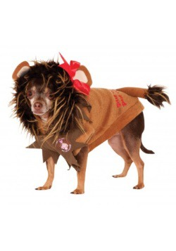 Cowardly Lion Pet Costume