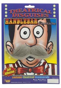 Grey Handlebar Mustache