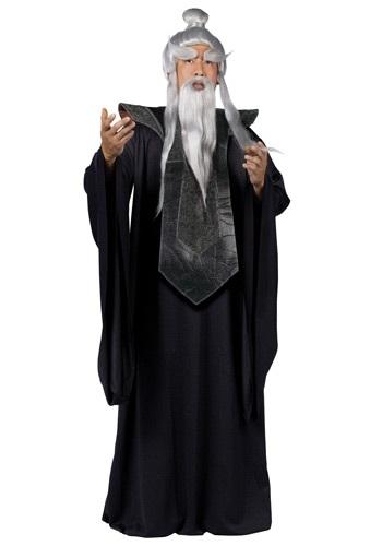Sensei Master Costume