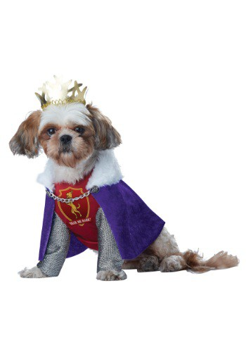 King of Bones Dog Costume