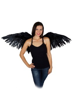 "Mocking Jay Wing 16x48"" Black"
