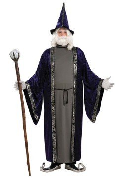 Plus Size Wizard Costume