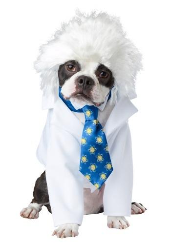 Al-bark Einstein Pet Costume
