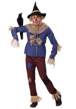 Adult Plus Size Patchwork Scarecrow Costume