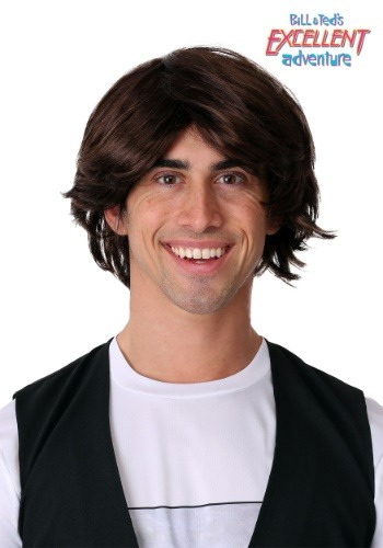 Bill & Ted's Excellent Adventure Adult Ted Wig