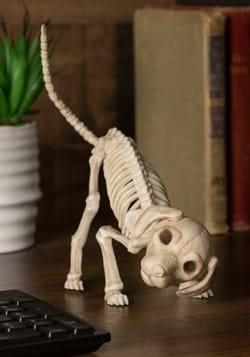 "7.5"" Puppy Skeleton"