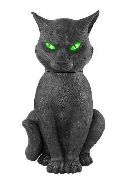 Animated Head Turning Cat