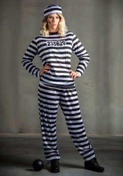 Women's Striped Prisoner Costume