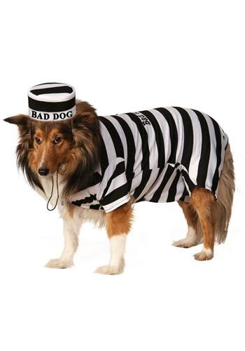 Prisoner Pet Costume