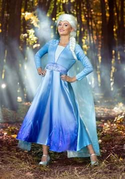 Frozen 2 Womens Elsa Deluxe Costume