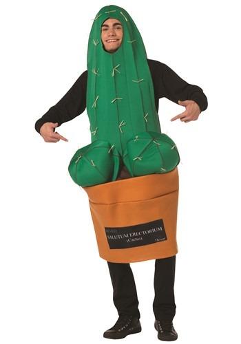Adult Happy Cactus Costume
