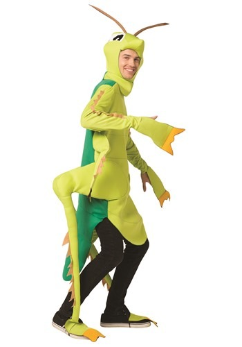 Adult Grasshopper Costume