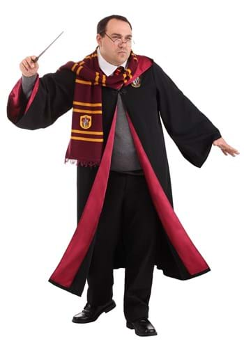 Plus Size Deluxe Harry Potter Costume Upd