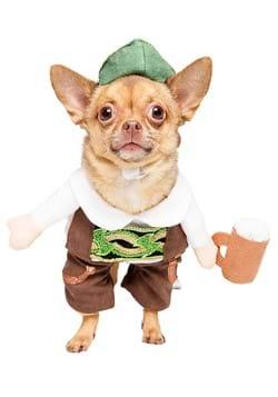 Oktoberfest Pet Costume