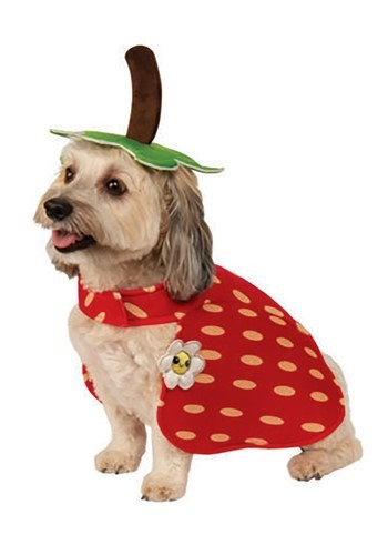 Yummy Strawberry Dog Costume