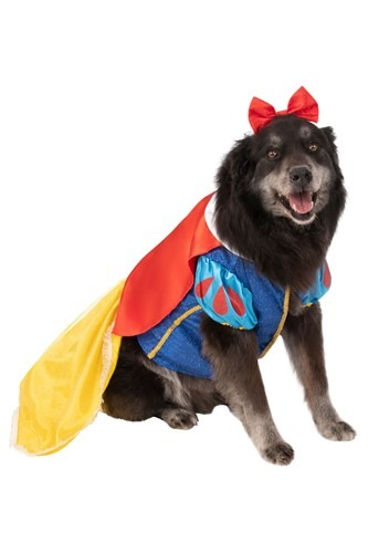 Snow White Plus Size Dog Costume