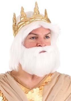 King Neptune Adult Wig and Beard Set