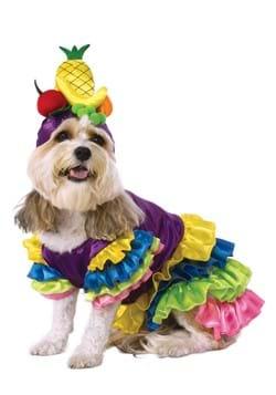 Brazilian Bombshell Pet Costume