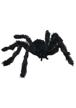 Small Hairy Black Spider
