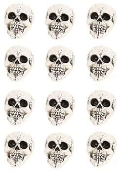 Large Skull 12-pack (CY21082)