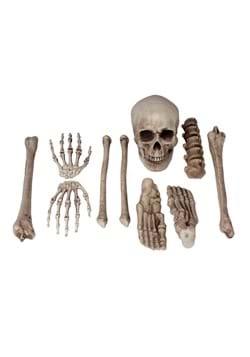 Bag O Bones Prop