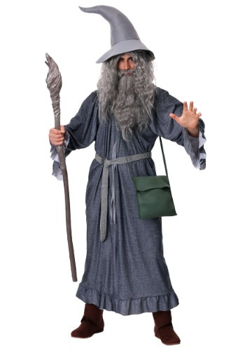 Adult Gandalf Costume